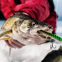 best walleye ice fishing rod
