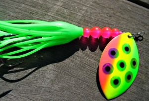 Best Salmon Spinners