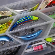 Best Coho Salmon Lures