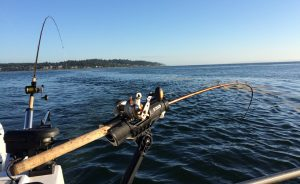 Trolling Speed for Salmon