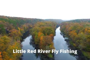 Little Red River Fly Fishing