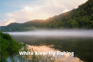 White River Fly Fishing